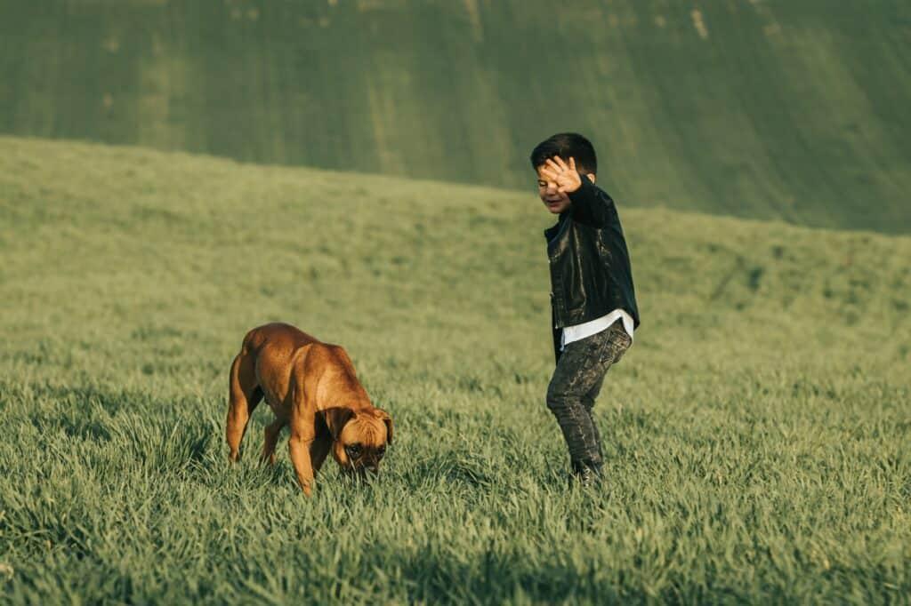 Honden losloop gebieden: Waar mag jouw hond loslopen ?