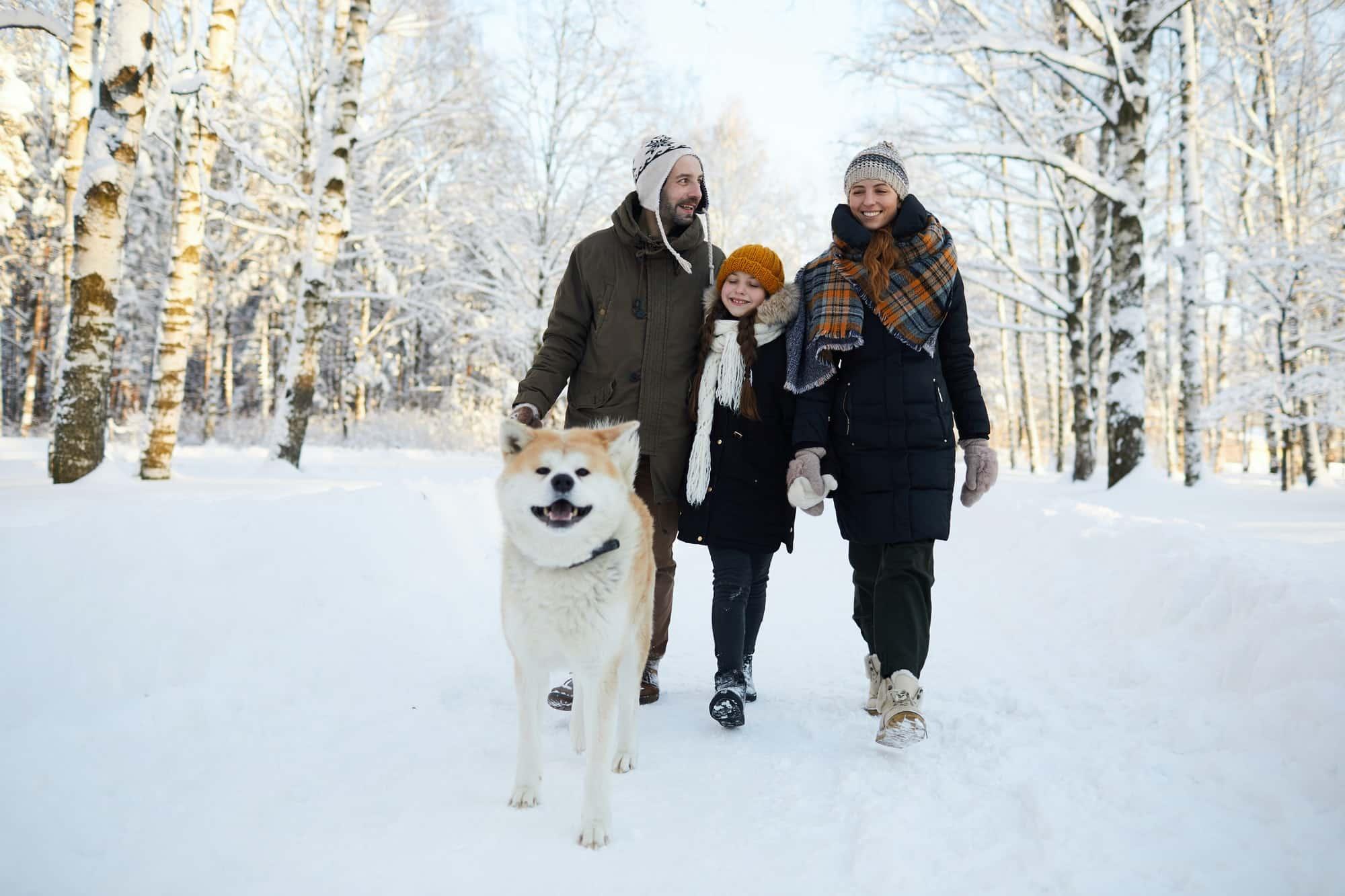 Family Walking Dog in Winter